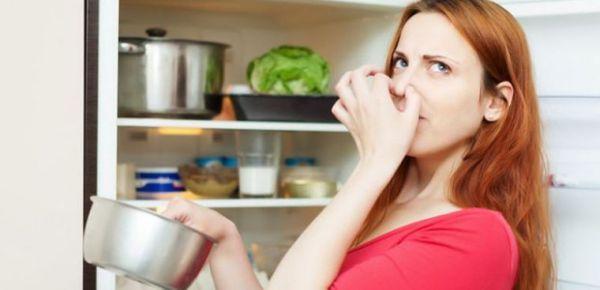 Tủ lạnh mới có mùi thì phải làm sao? Cách khắc phục mùi hôi trong tủ lạnh