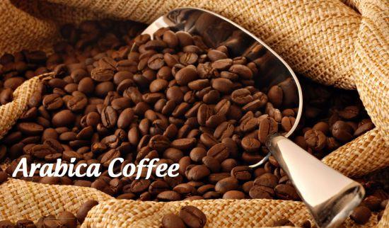 Tìm hiểu về cà phê chè Arabica - Giá trị và nguồn gốc