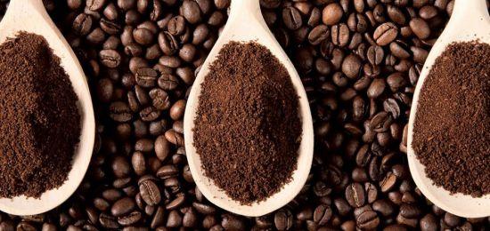 cafe arabica 550x260 jpg