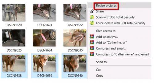 resize photos 11 500x269 JPG