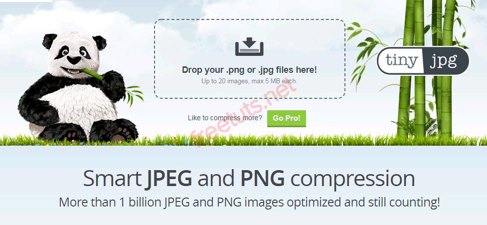 top 6 web nen hinh online 2 PNG