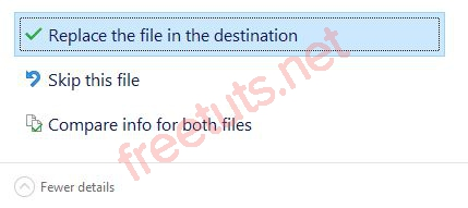 005 replace the file the destination JPG