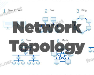 Network Topology là gì? Những cấu trúc liên kết mạng thường dùng nhất