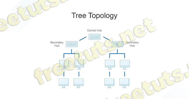 cau truc lien ket mang tree Topology jpg