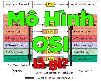 7 tầng trong mô hình OSI là gì? (Open Systems Interconnection)