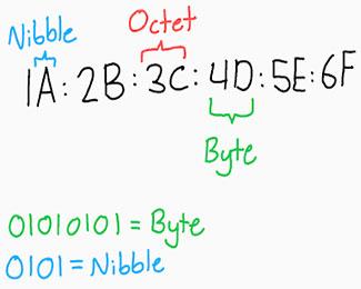 Octet là gì? So sánh Octet với Byte