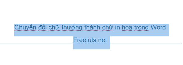 chuyen doi chu thuong thanh chu in hoa trong word excel 1 JPG
