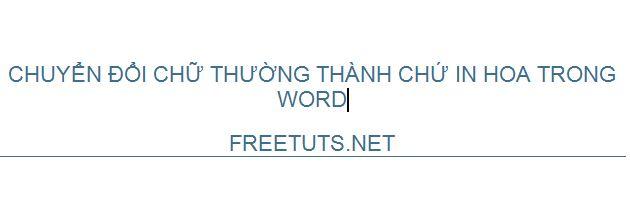 chuyen doi chu thuong thanh chu in hoa trong word excel 3 JPG