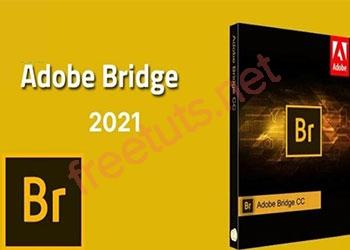 Download Adobe Bridge 2021 full tự động Active miễn phí