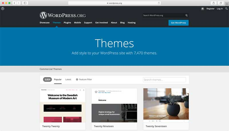 theme trong wordpress jpg