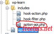 new file options api png