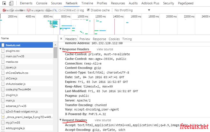 firebug view header parameters png