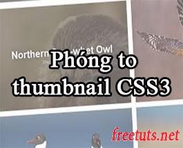 Viết chức năng phóng to thumbnail khi hover với CSS3