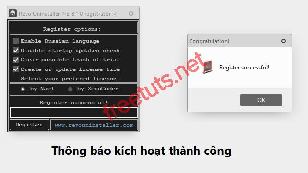 download revo uninstaller pro full 12 jpg