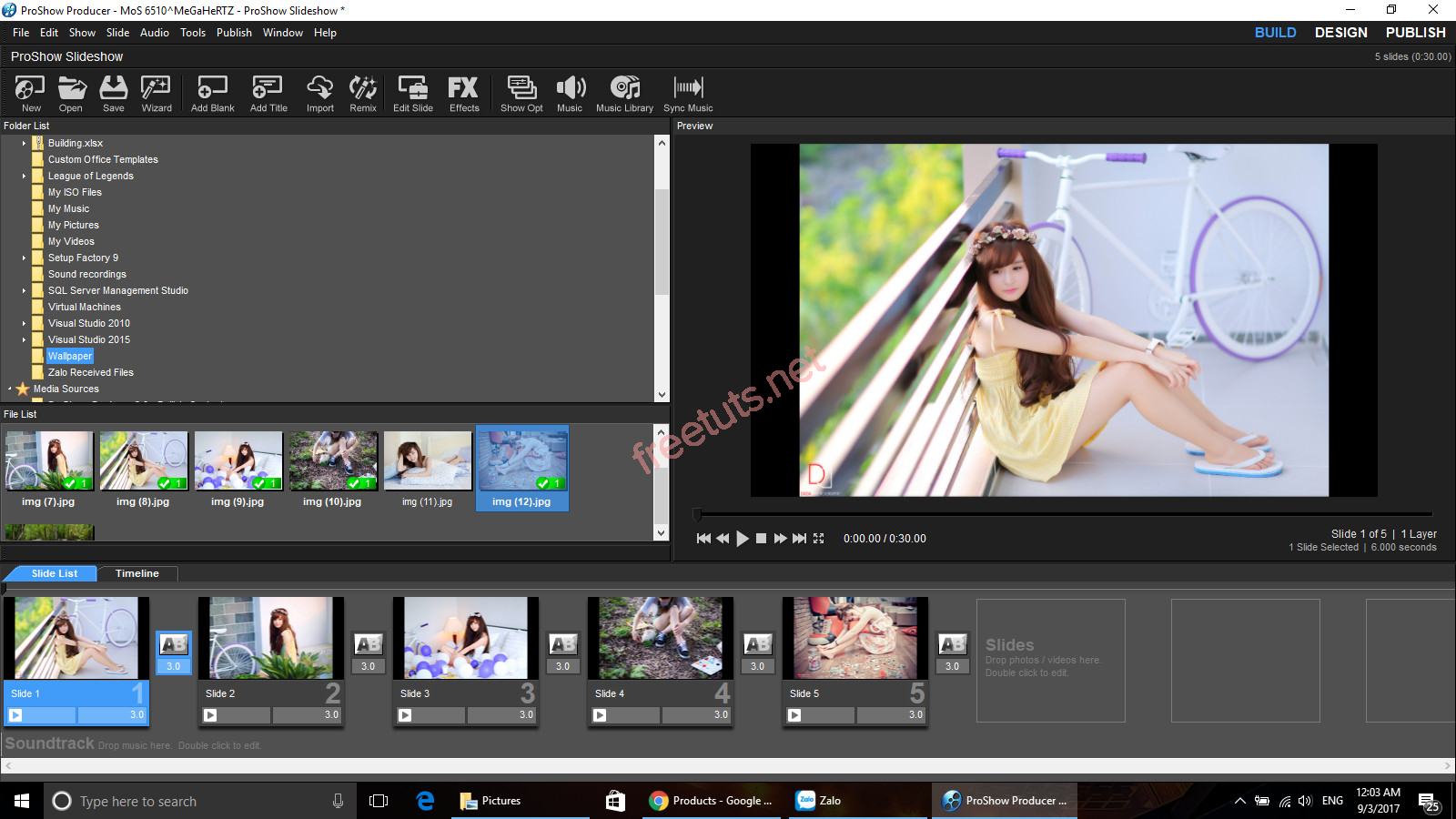 proshow download