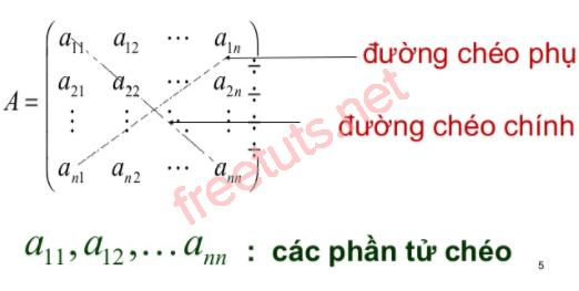 duongcheochinhphu PNG