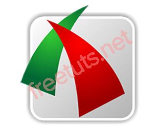 Download FSCapture 8.7 - Phần mềm chụp ảnh và quay video màn hình máy tính