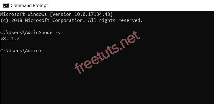 Kiểm tra phiên bản NodeJS bằng command line