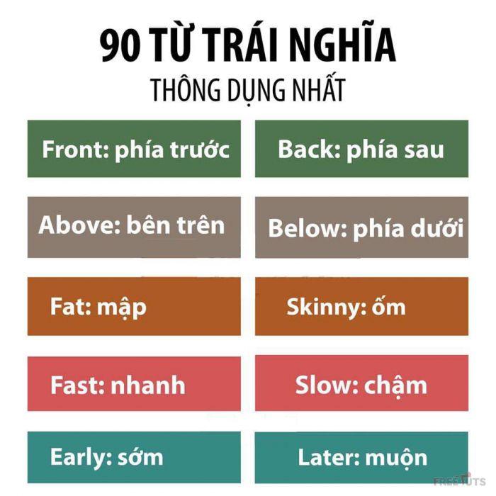 [Hình ảnh] - 90 từ đồng và trái nghĩa tiếng Anh thông dụng nhất