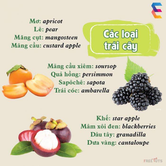 [Hình ảnh] - Một số từ vựng viết về trái cây và rau củ quả trong tiếng Anh