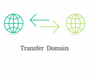 Transfer domain là gì? Những lưu ý quan trọng trước khi transfer