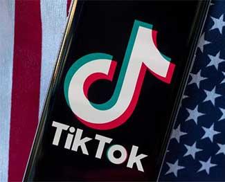 TikTok đã xóa hơn 380.000 video phản động ở Mỹ trong năm nay