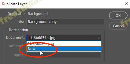 copy layer trong pts 11 jpg