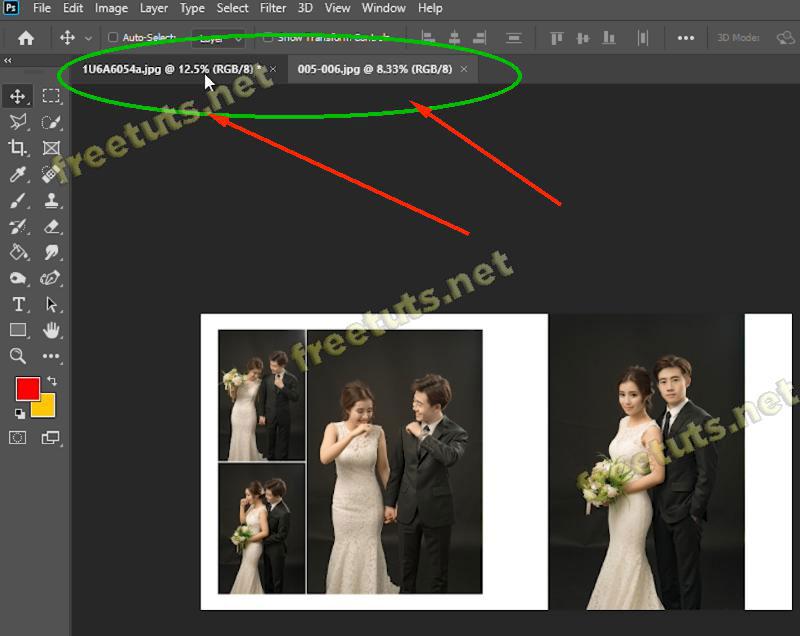 copy layer trong pts 13 jpg