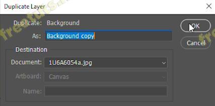 copy layer trong pts 3 jpg