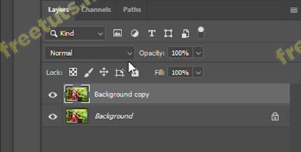 copy layer trong pts 4 jpg