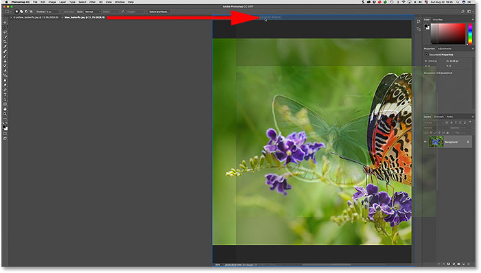 Cach xem nhieu hinh anh cung luc trong photoshop 14 jpg