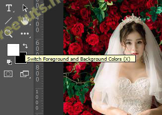 layer mask trong photoshop 16 jpg