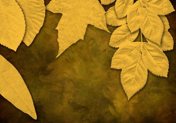 7 high resolution leaf brushes conceptart io jpg