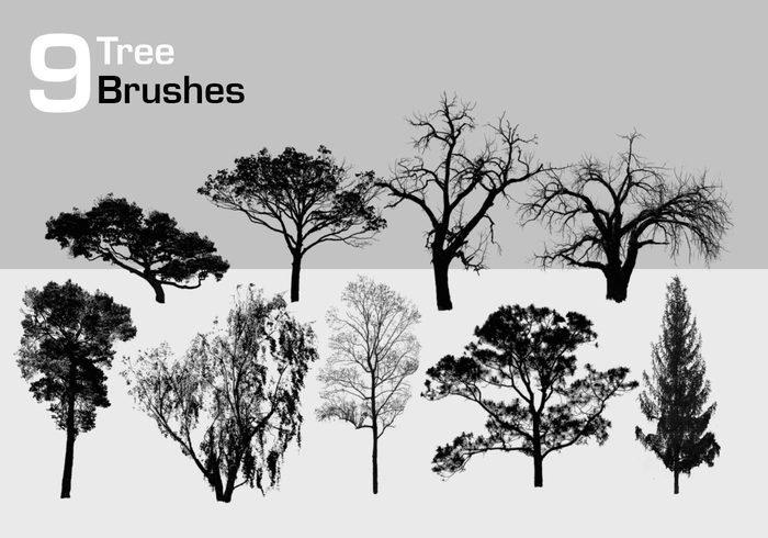 9 high resolution tree brushes jpg