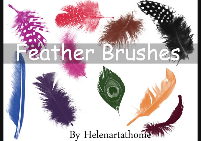 feather brushes jpg