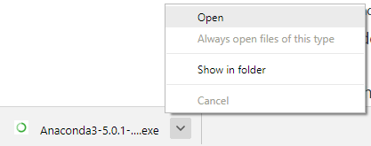 Once the download is complete, open the .exe file