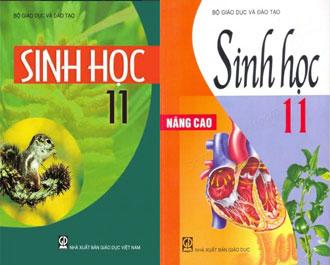 Tải sách giáo khoa sinh hoc 11 cơ bản / nâng cao pdf