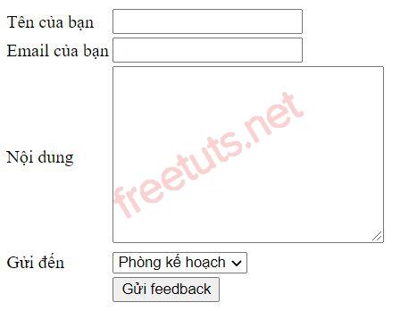 feedback 1 JPG