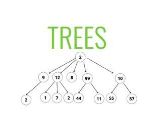 Cấu trúc cây